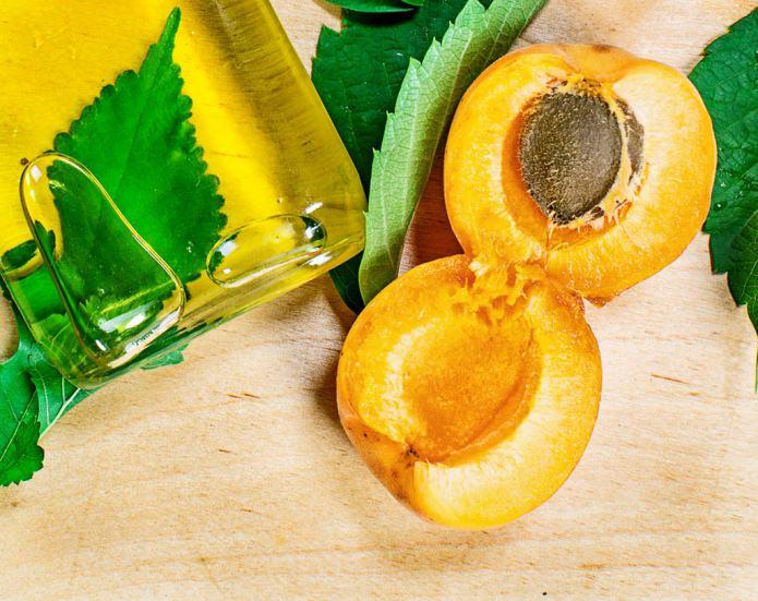 Как сделать масло из абрикосов 248