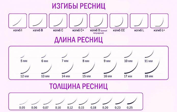 длина, толщина и изгибы