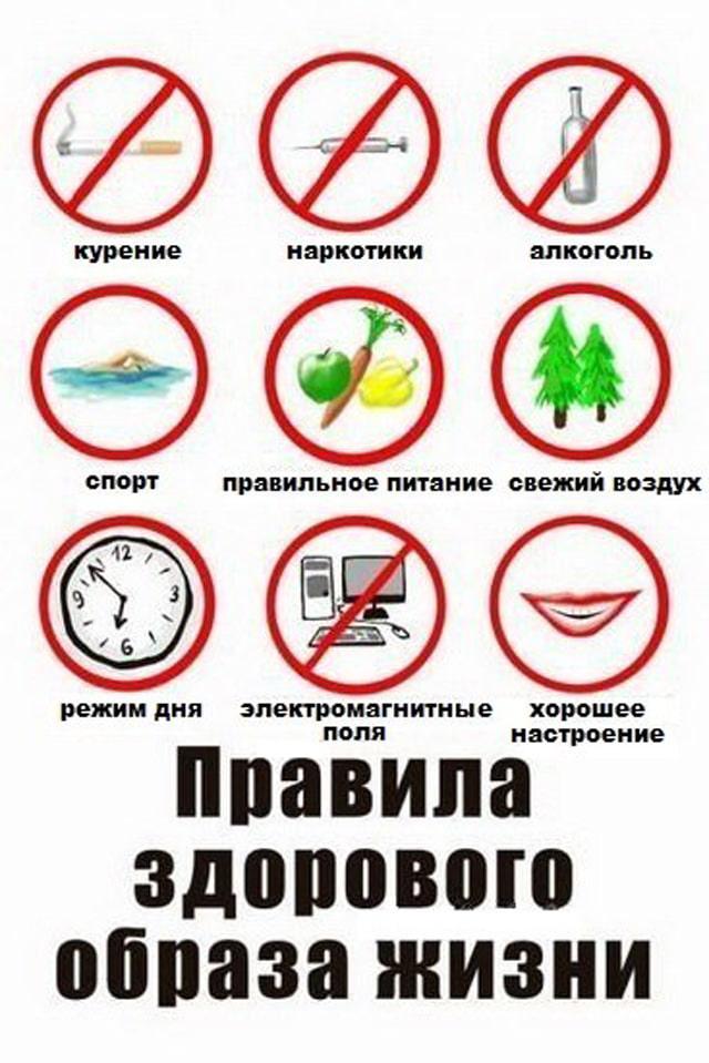 Правила здорового образа жизни Правила здорового образа жизни
